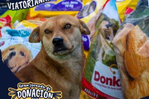 Post-Donaciones-Mascotas-13