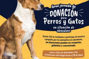 Post – Donaciones Perro